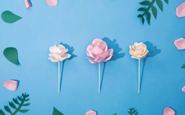 Paper Flowers - press